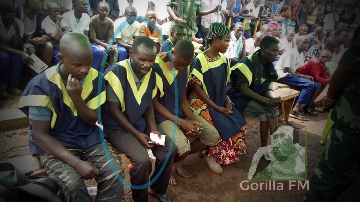 Photo of Un Chef Pygmée condamné à 15 ans pour destruction du Parc de Kahuzi Biega