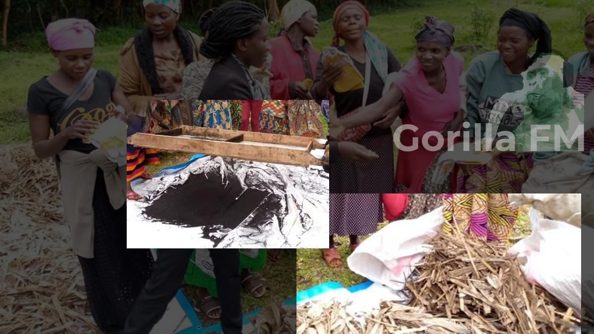 Photo of PNKB-APROVATOUR : Des braises en résidus de plantes pour éviter la déforestation du Parc de Kahuzi-Biega