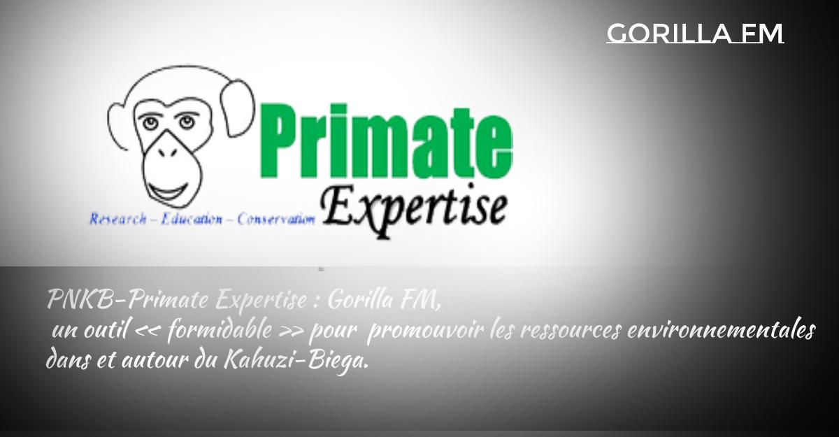 Photo of PNKB-Primate Expertise : Gorilla FM, un outil « formidable » pour  promouvoir les ressources environnementales dans et autour du Kahuzi-Biega.