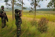 Photo of Le Parc de Kahuzi-Biega est sécurisé et prêt à accueillir les touristes