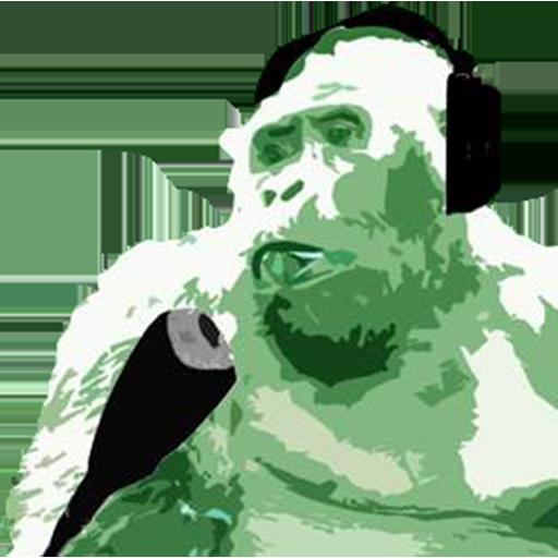 Photo of Gorilla FM